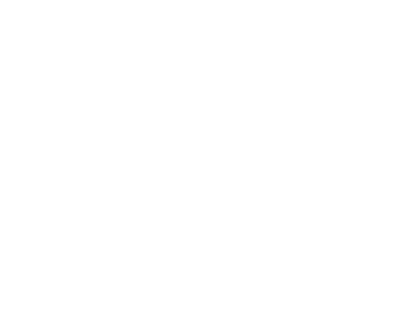 DRWV Foundation